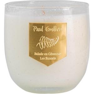 Les Bancels – Paul Emilien (ароматические свечи)